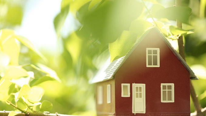 Construire habitation écologique